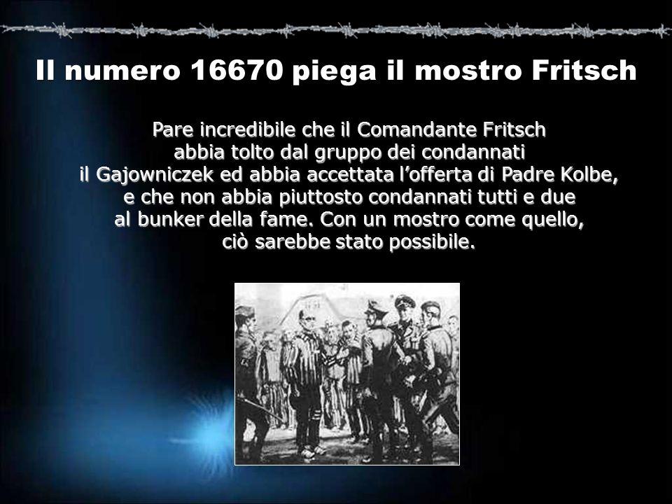 Pare incredibile che il Comandante Fritsch abbia tolto dal gruppo dei condannati il Gajowniczek ed abbia accettata lofferta di Padre Kolbe, e che non