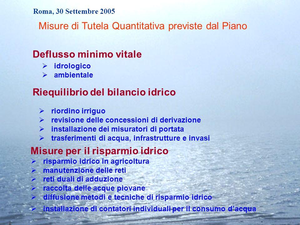 Roma, 30 Settembre 2005 Misure per il risparmio idrico risparmio idrico in agricoltura manutenzione delle reti reti duali di adduzione raccolta delle