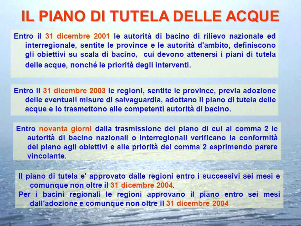 IL PIANO DI TUTELA DELLE ACQUE Entro il 31 dicembre 2001 le autorità di bacino di rilievo nazionale ed interregionale, sentite le province e le autori