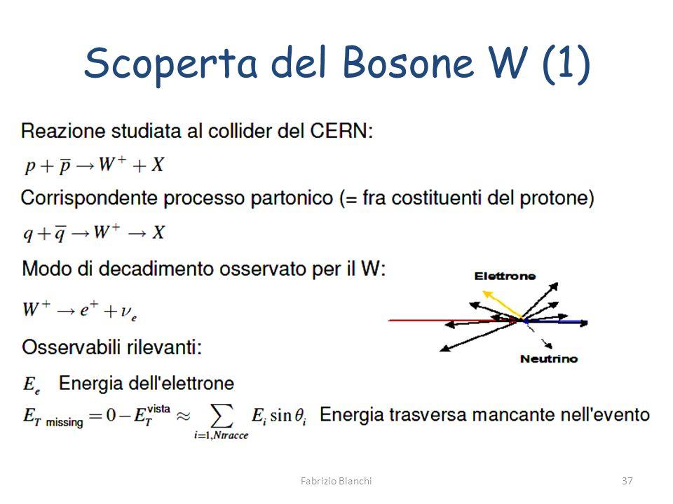 Scoperta del Bosone W (1) Fabrizio Bianchi37