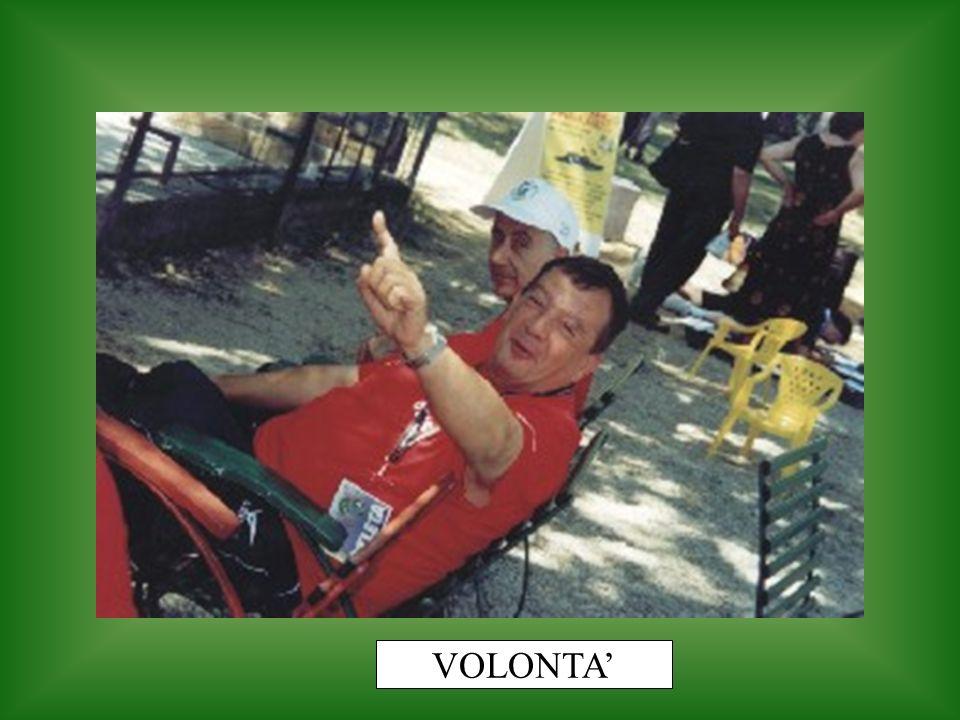 VOLONTA