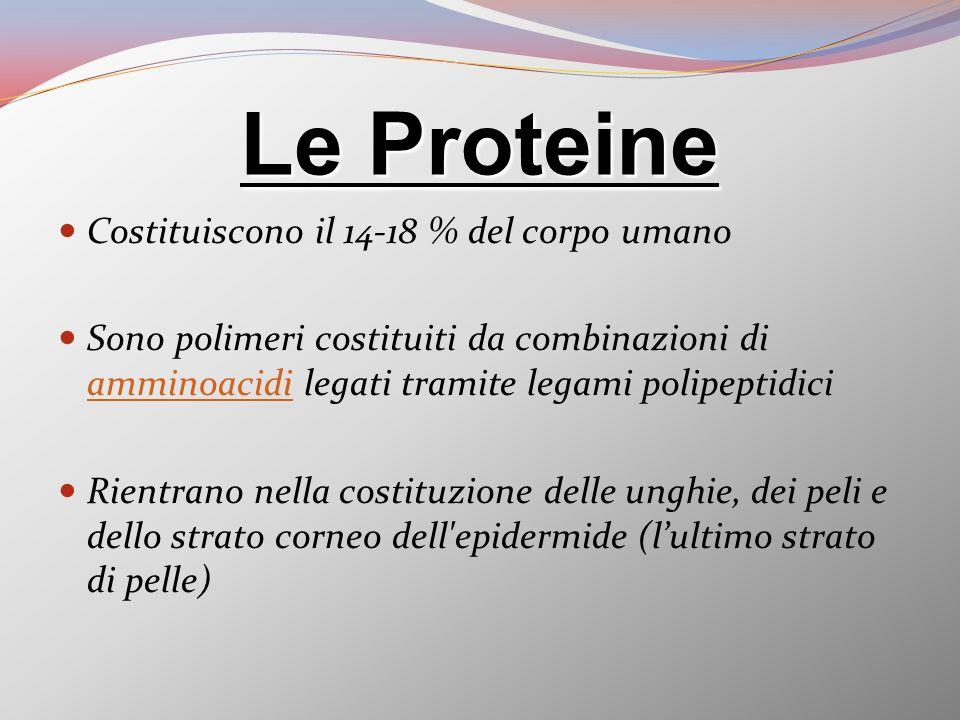 Le Proteine Costituiscono il 14-18 % del corpo umano Sono polimeri costituiti da combinazioni di amminoacidi legati tramite legami polipeptidici ammin