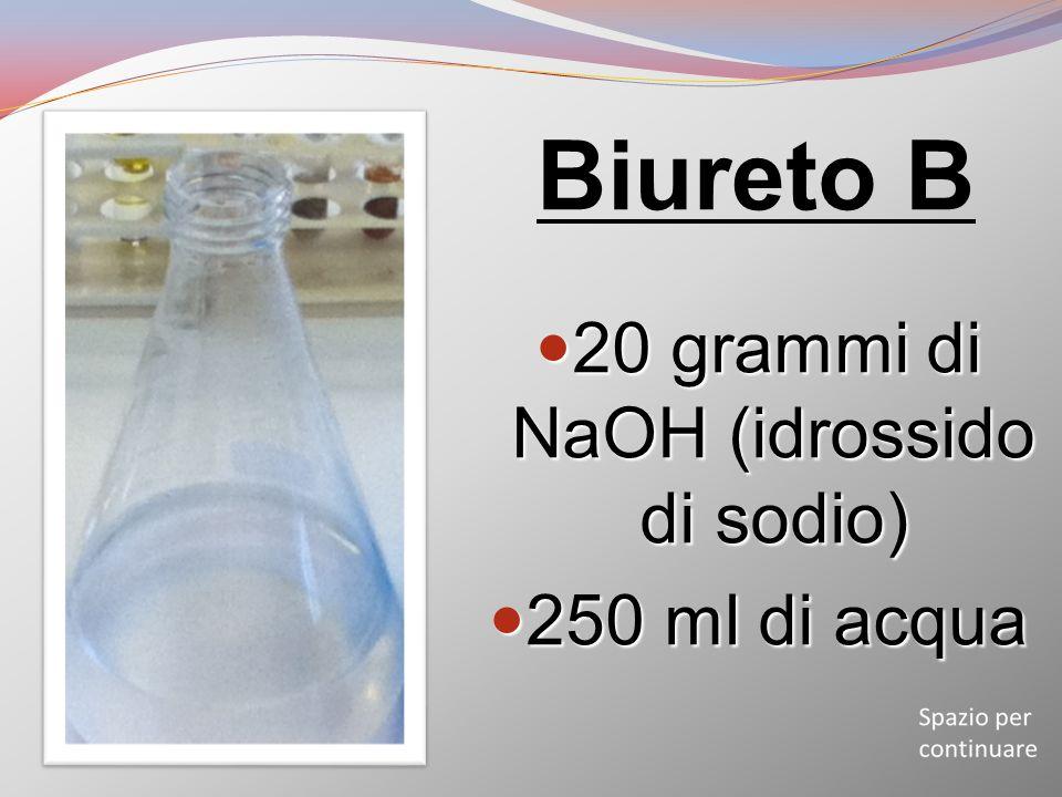 Biureto B 20 grammi di NaOH (idrossido di sodio) 20 grammi di NaOH (idrossido di sodio) 250 ml di acqua 250 ml di acqua