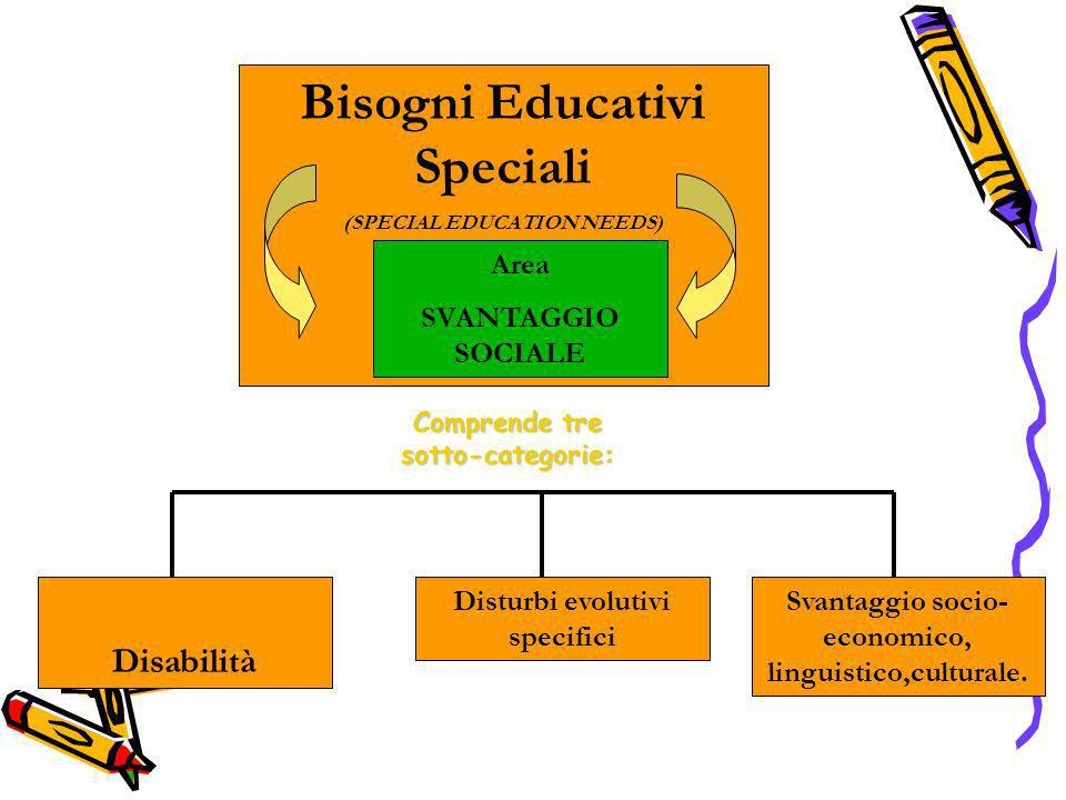 Disabilità Svantaggio socio- economico, linguistico,culturale. Disturbi evolutivi specifici Bisogni Educativi Speciali (SPECIAL EDUCATION NEEDS) Area