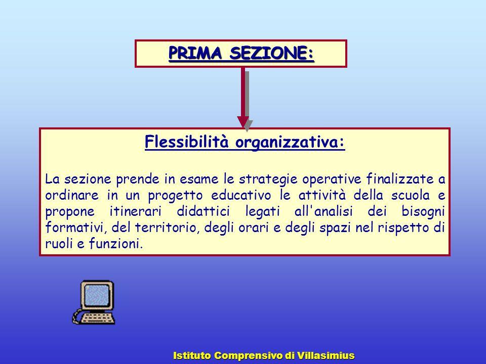 Flessibilità organizzativa: La sezione prende in esame le strategie operative finalizzate a ordinare in un progetto educativo le attività della scuola
