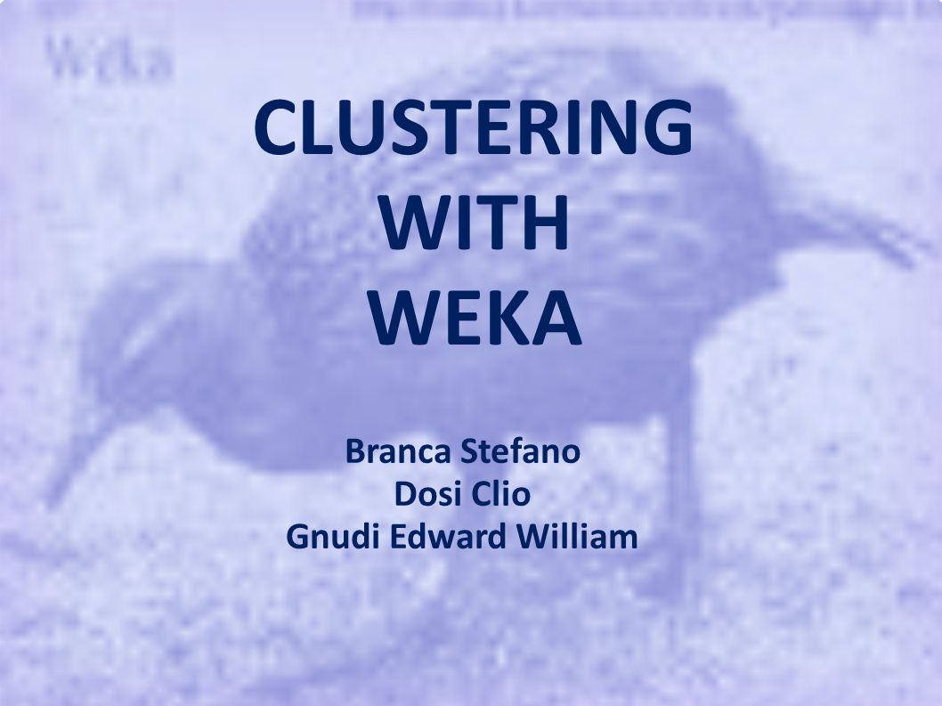Introduzione Clustering con weka Algoritmi partizionanti K-Means Algoritmi basati sulla densità DBScan OPTICS Algoritmi per DB transazionali CLOPE Outline