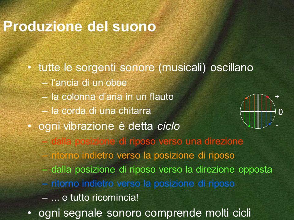 0 + - Produzione del suono tutte le sorgenti sonore (musicali) oscillano –lancia di un oboe –la colonna daria in un flauto –la corda di una chitarra o