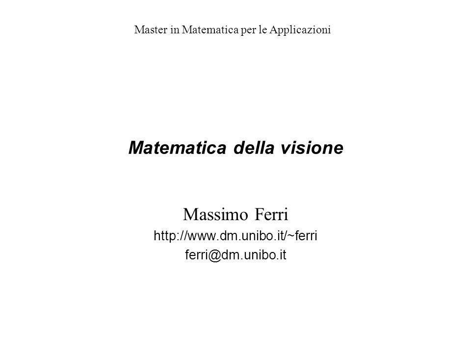 Matematica della visione Massimo Ferri http://www.dm.unibo.it/~ferri ferri@dm.unibo.it Master in Matematica per le Applicazioni