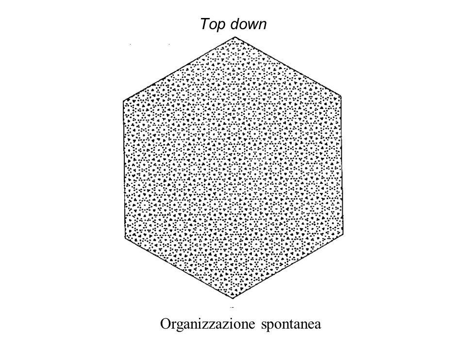 Top down Triangoli di Kanisza
