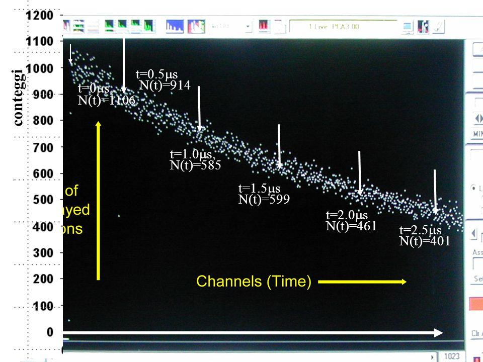 149 t=0 s, N(t)=1106 t=0.5 s N(t)=914 t=1.0 s, N(t)=585 t=1.5 s N(t)=599 t=2.0 s N(t)=461 conteggi t=2.5 s N(t)=401