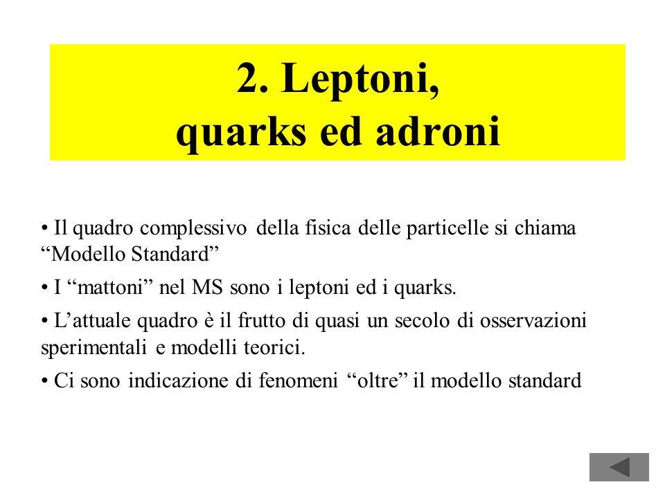 16 2. Leptoni, quarks ed adroni Il quadro complessivo della fisica delle particelle si chiama Modello Standard I mattoni nel MS sono i leptoni ed i qu