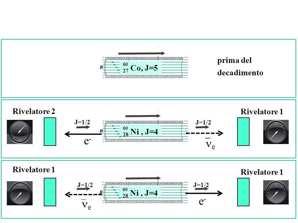 prima del decadimento Rivelatore 1 Rivelatore 2 28 Ni, J=4 60 e-e- J=1/2 e 28 Ni, J=4 60 e-e- e Rivelatore 1 J=1/2 27 Co, J=5 60