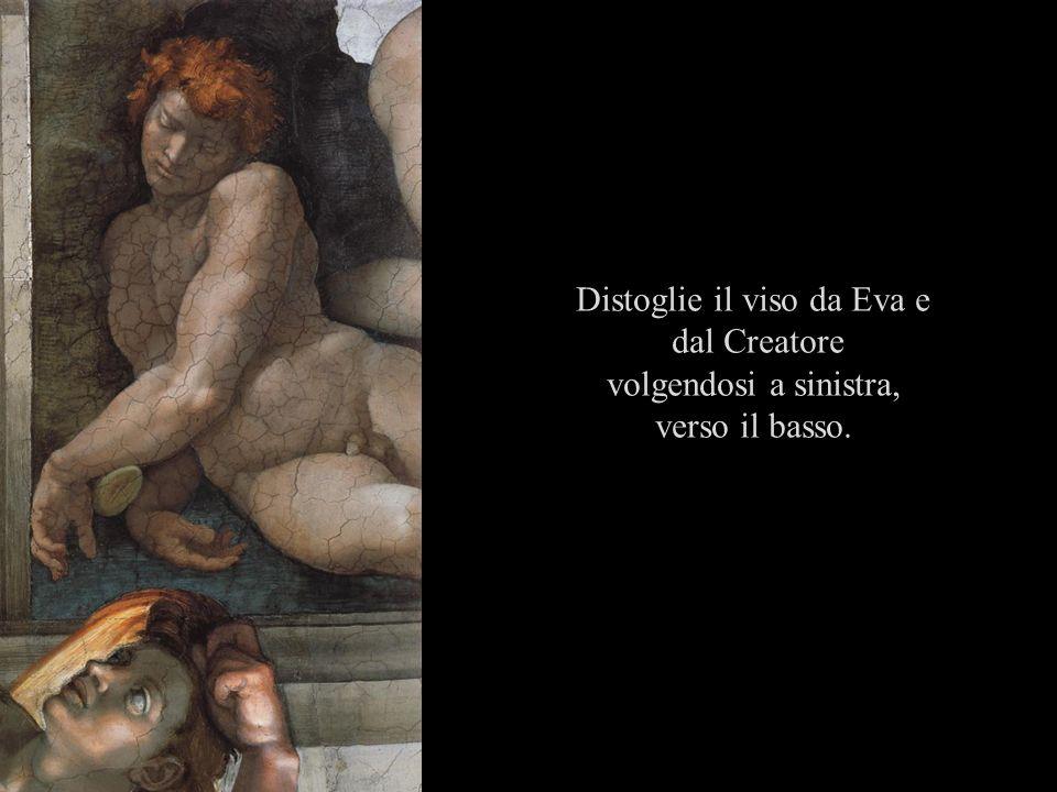 Distoglie il viso da Eva e dal Creatore volgendosi a sinistra, verso il basso.