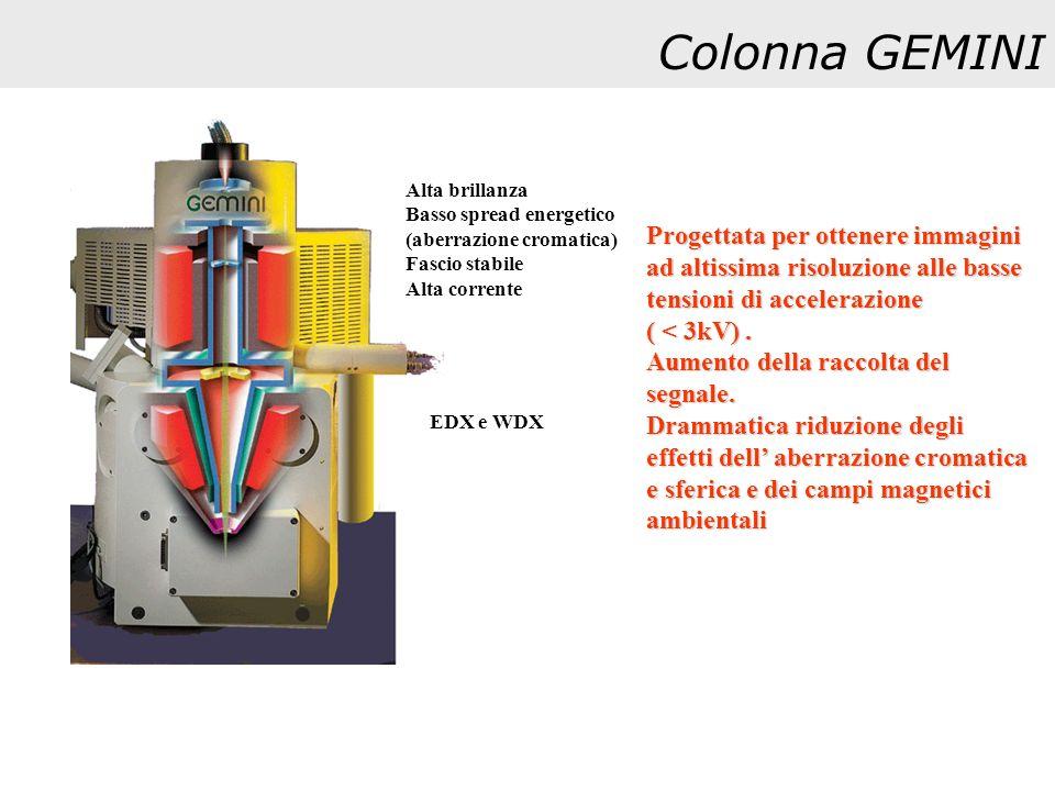 Colonna GEMINI Progettata per ottenere immagini ad altissima risoluzione alle basse tensioni di accelerazione ( < 3kV). Aumento della raccolta del seg