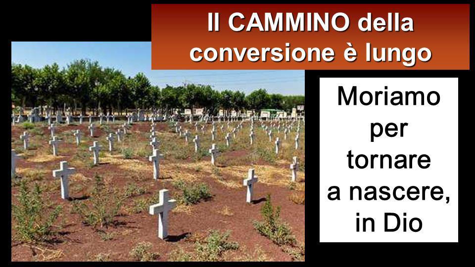 Moriamo per tornare a nascere, in Dio Il CAMMINO della conversione è lungo