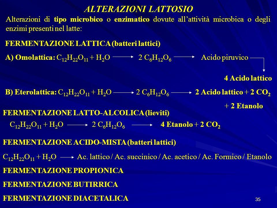 35 ALTERAZIONI LATTOSIO Alterazioni di tipo microbico o enzimatico dovute allattività microbica o degli enzimi presenti nel latte: FERMENTAZIONE LATTI
