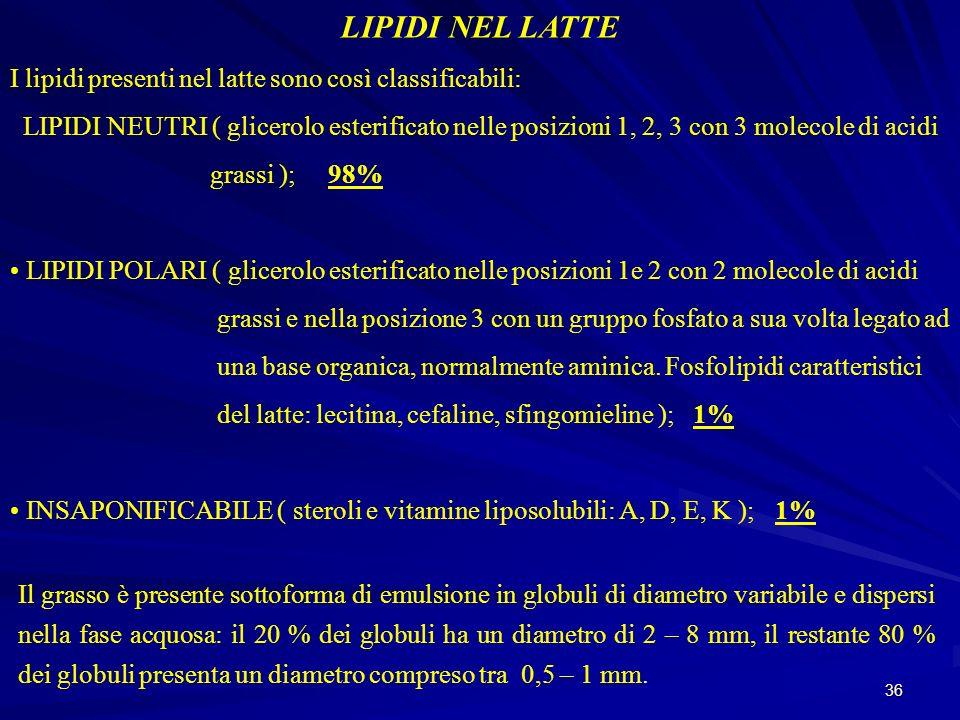 36 LIPIDI NEL LATTE I lipidi presenti nel latte sono così classificabili: LIPIDI NEUTRI ( glicerolo esterificato nelle posizioni 1, 2, 3 con 3 molecol