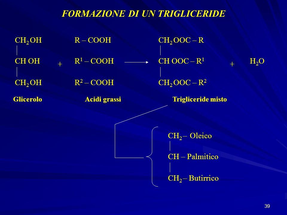 39 FORMAZIONE DI UN TRIGLICERIDE CH 2 OH CH OH CH 2 OH Glicerolo + R – COOH Acidi grassi CH 2 OOC – R CH OOC – R 1 CH 2 OOC – R 2 Trigliceride misto +