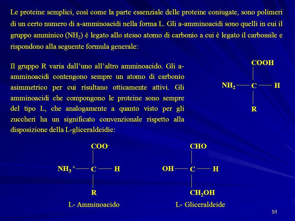 51 Le proteine semplici, così come la parte essenziale delle proteine coniugate, sono polimeri di un certo numero di a-amminoacidi nella forma L. Gli
