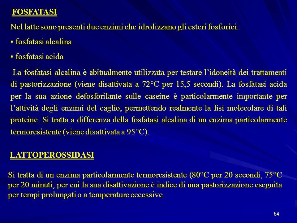 64 FOSFATASI Nel latte sono presenti due enzimi che idrolizzano gli esteri fosforici: fosfatasi alcalina fosfatasi acida La fosfatasi alcalina è abitu