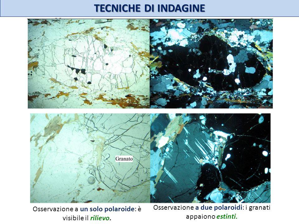 TECNICHE DI INDAGINE Osservazione a un solo polaroide: è visibile il rilievo. Osservazione a due polaroidi: i granati appaiono estinti.
