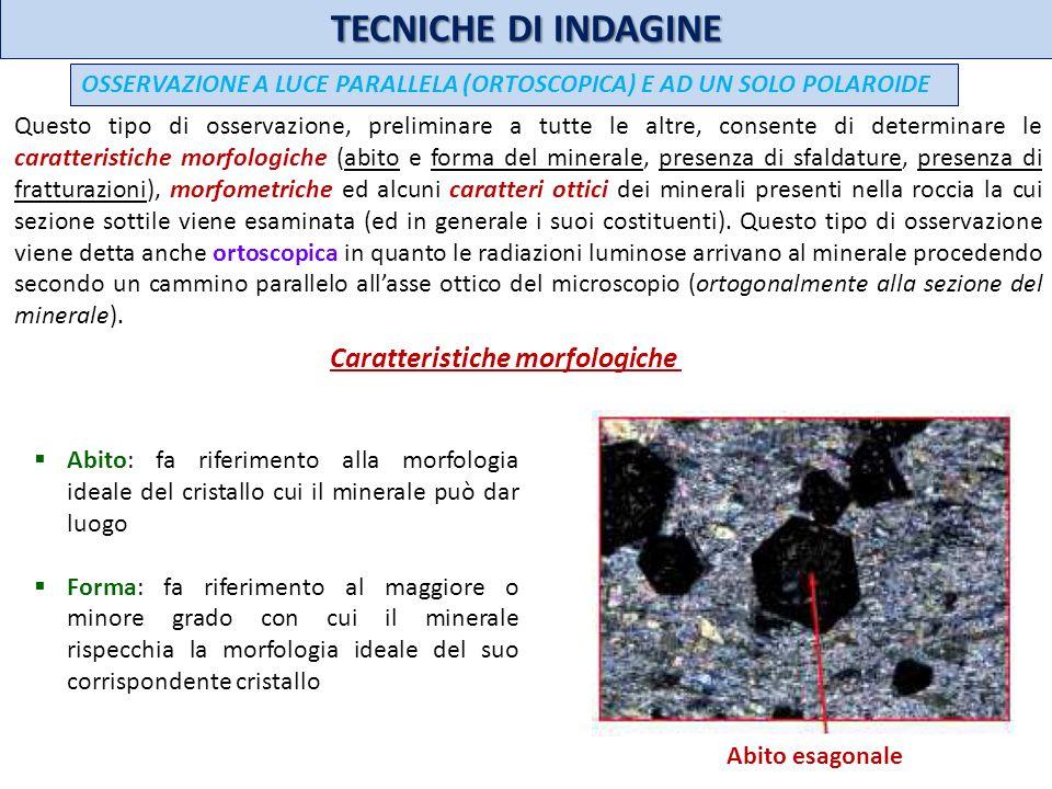 TECNICHE DI INDAGINE legge dellalbite I plagioclasi mostrano generalmente geminazioni polisintetiche secondo la legge dellalbite: un insieme di cristalli paralleli a sviluppo lamellare; lasse di geminazione è normale allasse y, il piano di contatto è il piano y.