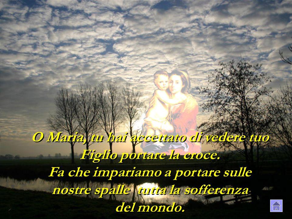 O Maria, tu hai accettato di vedere tuo Figlio portare la croce. Fa che impariamo a portare sulle nostre spalle tutta la sofferenza del mondo.
