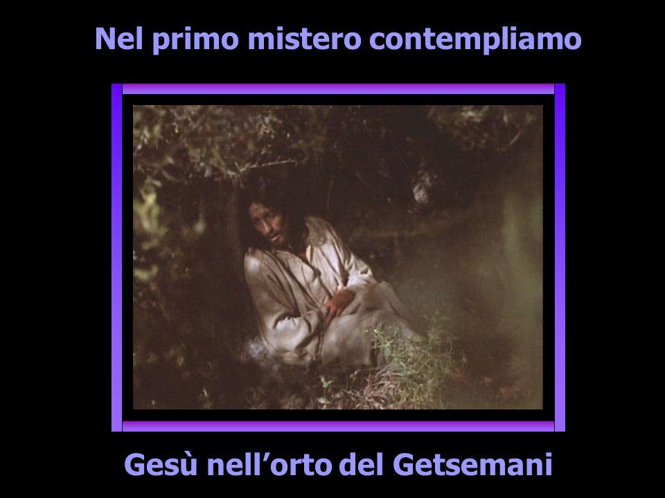 Nel primo mistero contempliamo Gesù nellorto del Getsemani