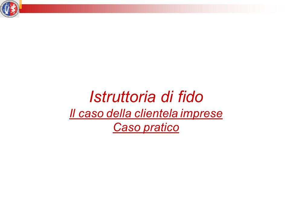 Istruttoria di fido Il caso della clientela imprese Caso pratico