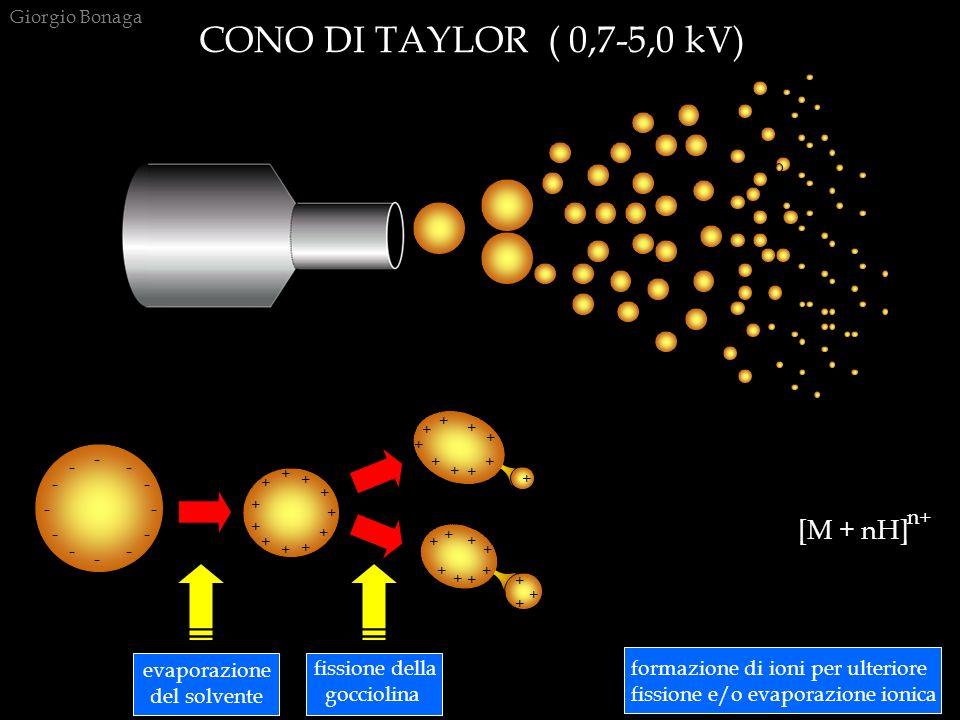 CONO DI TAYLOR ( 0,7-5,0 kV) Giorgio Bonaga + + + + + + + + + + + + + + + + + + + + + + + + + + + + + + + + + + ++ + + + + ++ ++ + evaporazione del so