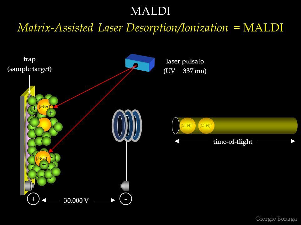 [M-H] + + + + MALDI Matrix-Assisted Laser Desorption/Ionization = MALDI Giorgio Bonaga [M-H] + + + +- laser pulsato (UV = 337 nm) time-of-flight trap