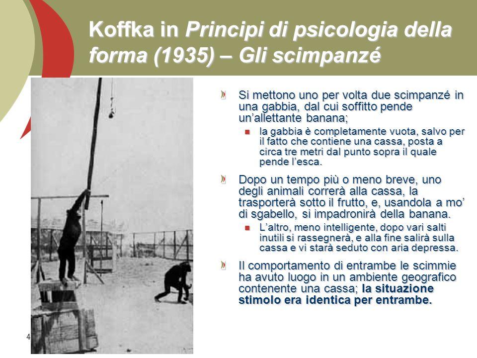 48 Koffka in Principi di psicologia della forma (1935) – Gli scimpanzé Si mettono uno per volta due scimpanzé in una gabbia, dal cui soffitto pende un