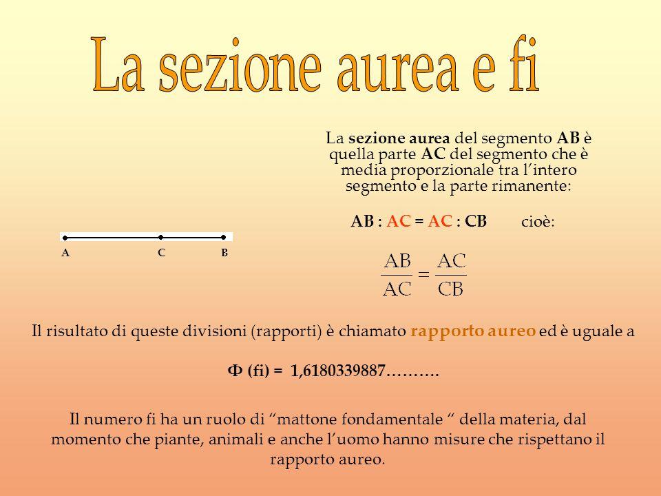 La sezione aurea del segmento AB è quella parte AC del segmento che è media proporzionale tra lintero segmento e la parte rimanente: AB : AC = AC : CB