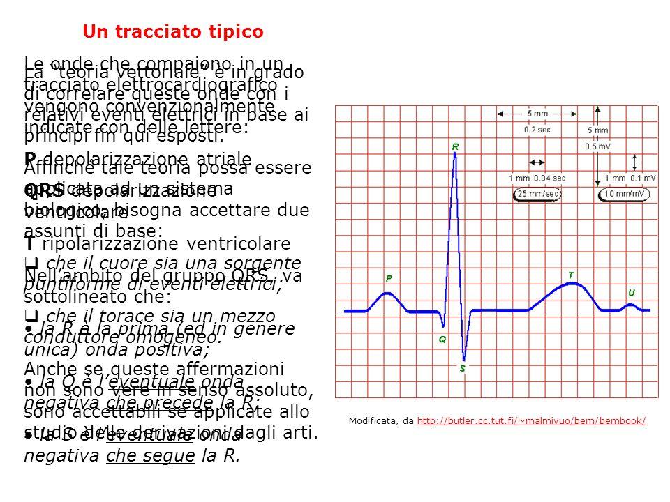 Un tracciato tipico Le onde che compaiono in un tracciato elettrocardiografico vengono convenzionalmente indicate con delle lettere: P depolarizzazion