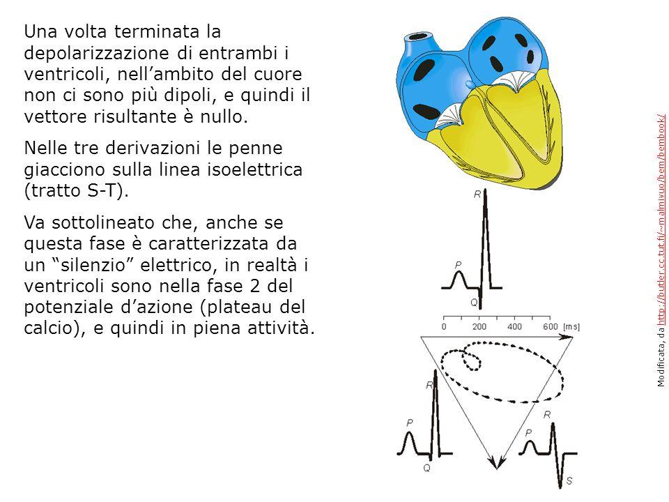 Una volta terminata la depolarizzazione di entrambi i ventricoli, nellambito del cuore non ci sono più dipoli, e quindi il vettore risultante è nullo.