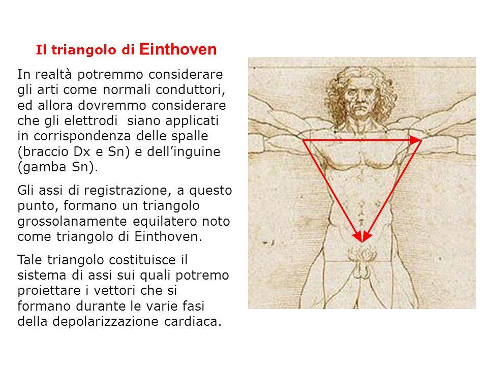 Il triangolo di Einthoven In realtà potremmo considerare gli arti come normali conduttori, ed allora dovremmo considerare che gli elettrodi siano appl