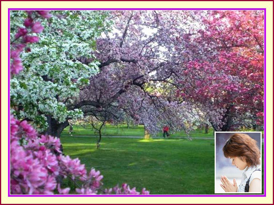 .. La preghiera, la vera, é silenziosa, perché ogni parola é imperfetta. Francine Ouellette scrittrice americana