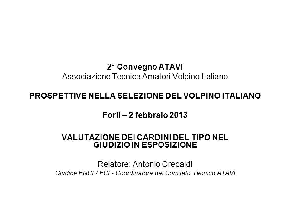 2° Convegno ATAVI Associazione Tecnica Amatori Volpino Italiano PROSPETTIVE NELLA SELEZIONE DEL VOLPINO ITALIANO Forlì – 2 febbraio 2013 VALUTAZIONE D