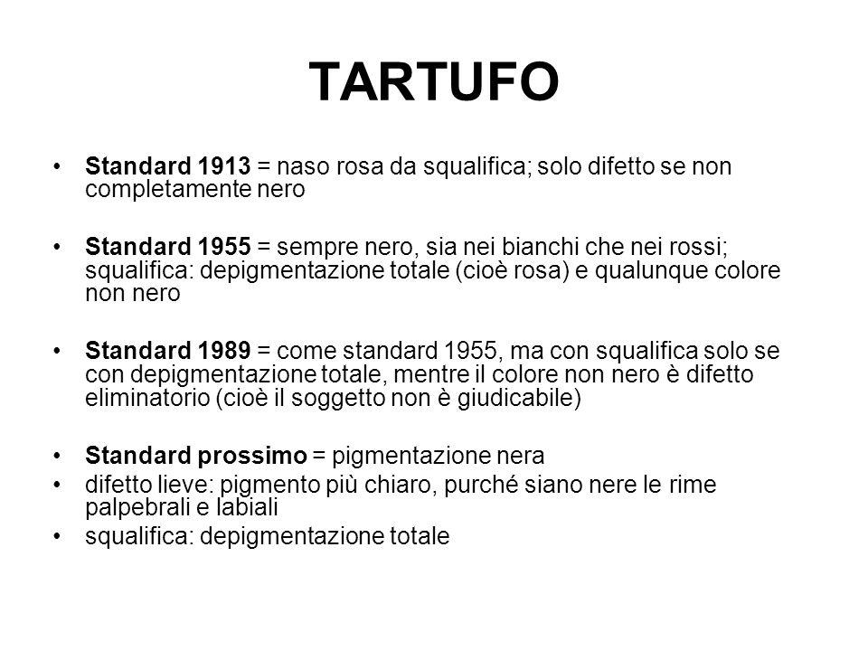 TARTUFO Standard 1913 = naso rosa da squalifica; solo difetto se non completamente nero Standard 1955 = sempre nero, sia nei bianchi che nei rossi; sq