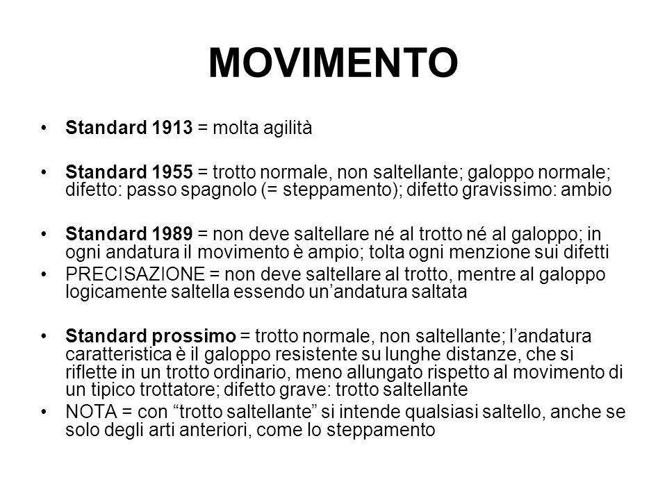MOVIMENTO Standard 1913 = molta agilità Standard 1955 = trotto normale, non saltellante; galoppo normale; difetto: passo spagnolo (= steppamento); dif
