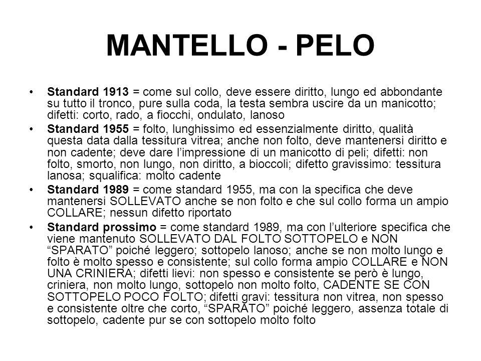 MANTELLO - PELO Standard 1913 = come sul collo, deve essere diritto, lungo ed abbondante su tutto il tronco, pure sulla coda, la testa sembra uscire d