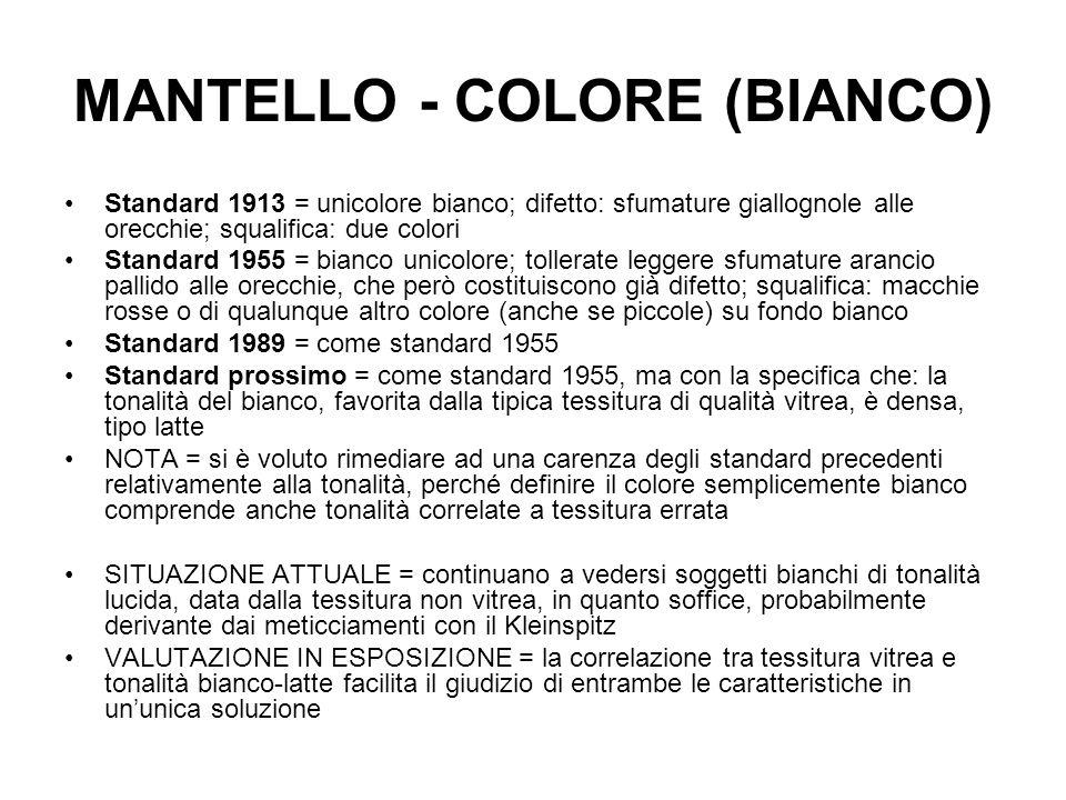 MANTELLO - COLORE (BIANCO) Standard 1913 = unicolore bianco; difetto: sfumature giallognole alle orecchie; squalifica: due colori Standard 1955 = bian