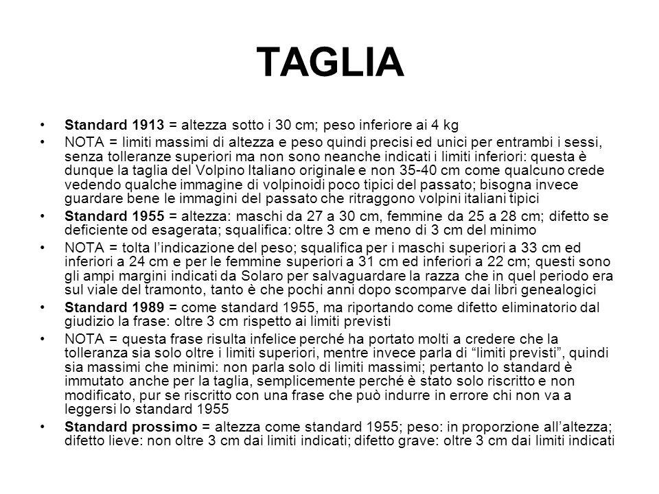 TAGLIA Standard 1913 = altezza sotto i 30 cm; peso inferiore ai 4 kg NOTA = limiti massimi di altezza e peso quindi precisi ed unici per entrambi i se