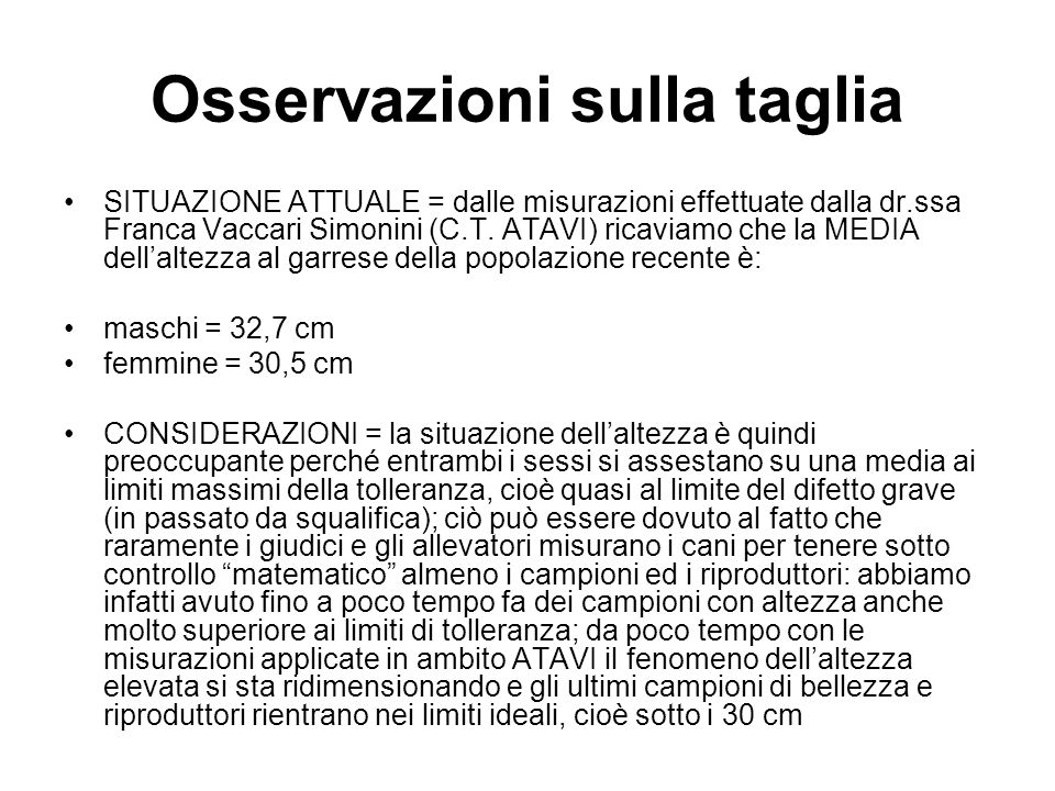 Osservazioni sulla taglia SITUAZIONE ATTUALE = dalle misurazioni effettuate dalla dr.ssa Franca Vaccari Simonini (C.T. ATAVI) ricaviamo che la MEDIA d