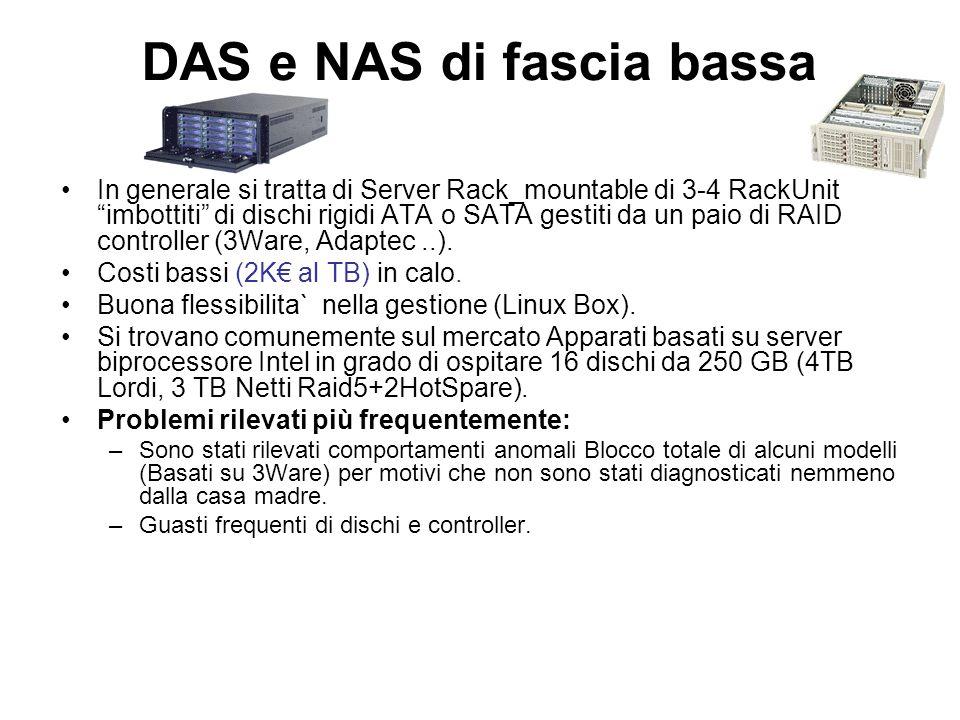 DAS e NAS di fascia bassa In generale si tratta di Server Rack_mountable di 3-4 RackUnit imbottiti di dischi rigidi ATA o SATA gestiti da un paio di R