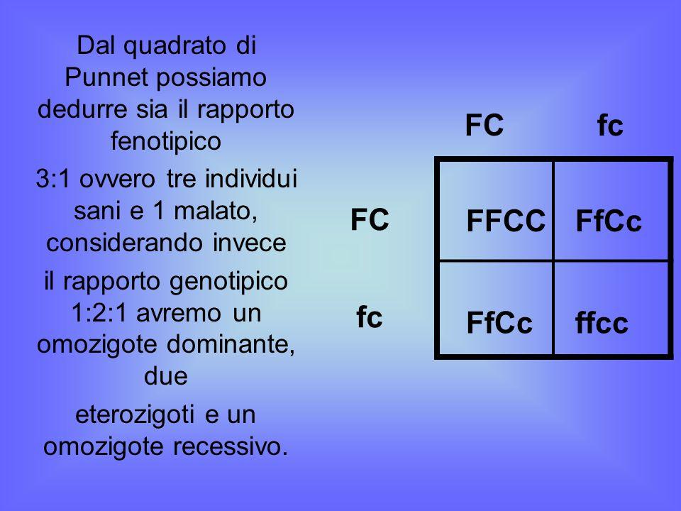 Dal quadrato di Punnet possiamo dedurre sia il rapporto fenotipico 3:1 ovvero tre individui sani e 1 malato, considerando invece il rapporto genotipic