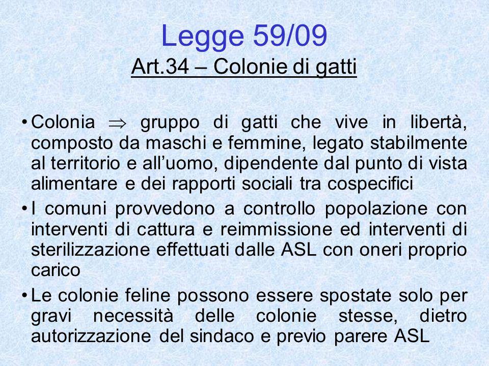 Legge 59/09 Art.34 – Colonie di gatti Colonia gruppo di gatti che vive in libertà, composto da maschi e femmine, legato stabilmente al territorio e al