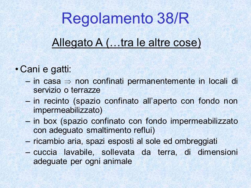 Regolamento 38/R Allegato A (…tra le altre cose) Cani e gatti: –in casa non confinati permanentemente in locali di servizio o terrazze –in recinto (sp
