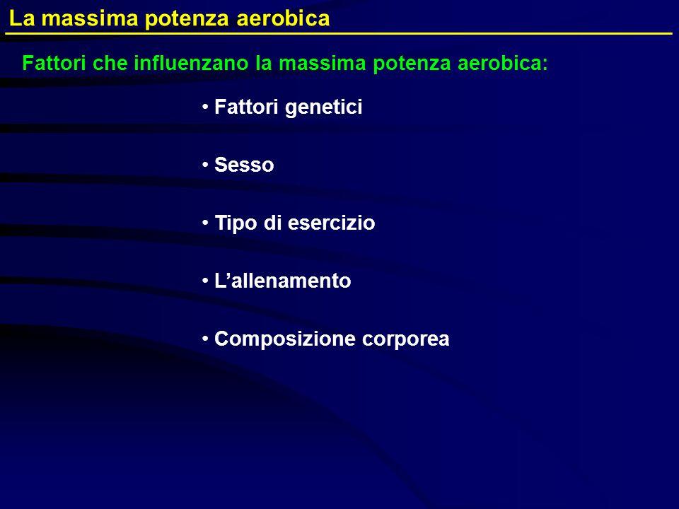 Fattori genetici Sesso Tipo di esercizio Lallenamento Composizione corporea La massima potenza aerobica Fattori che influenzano la massima potenza aer