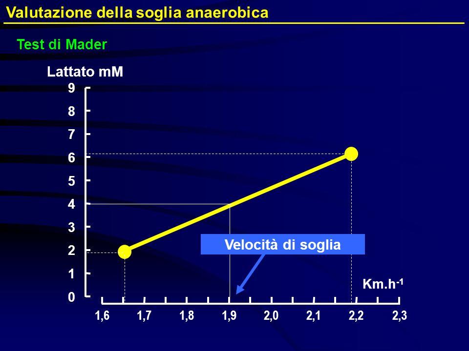 Valutazione della soglia anaerobica Test di Mader 0 2 3 5 7 9 Lattato mM Km.h -1 1 4 6 8 1,61,81,71,92,02,12,22,3 Velocità di soglia